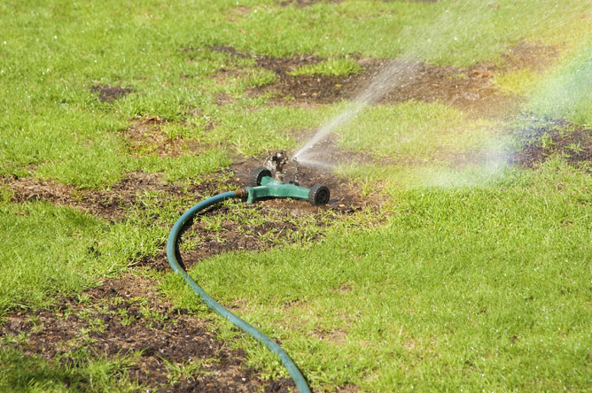 How to repair a damaged lawn